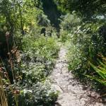 V-Gardens - 07
