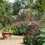 V-Gardens - 19